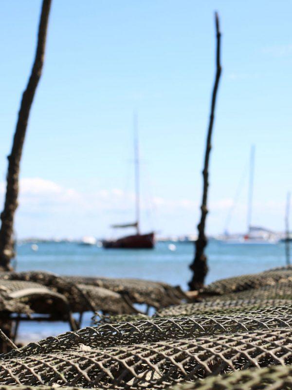 aquaculture charente maritime